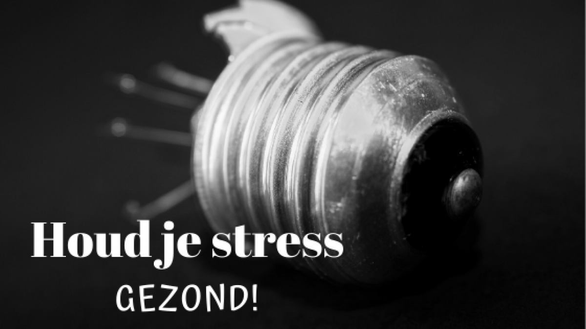 stress is gezond